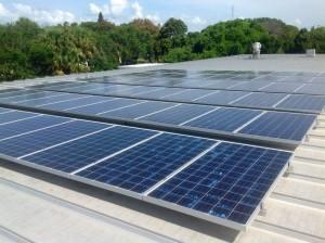 Sunseed-solar-installation
