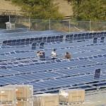 Martins-Creek-solar-farm-2